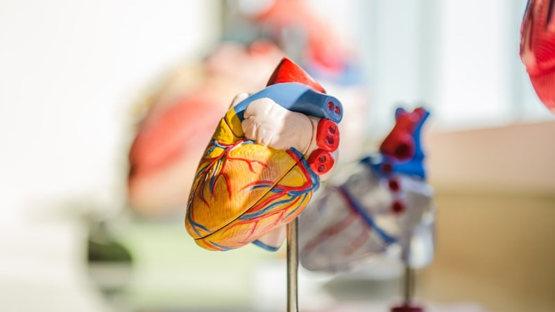 Efek Berhenti Merokok Total - Jantung