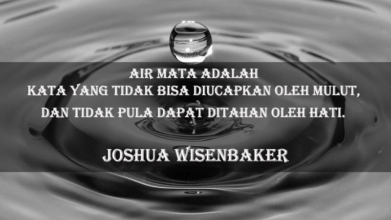 Kata-Kata Sakit Hati dan Kecewa - Joshua Wisenbaker